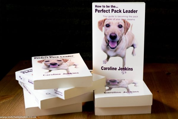 how to be the perfect pack leader by caroline jenkins dog training book canine behaviour