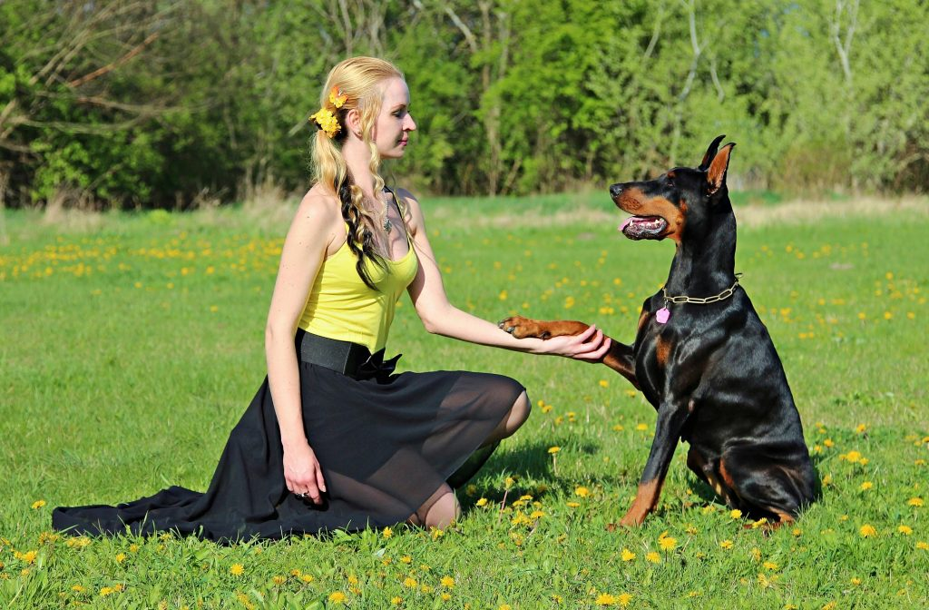 a lady and a doberman dog holding hands